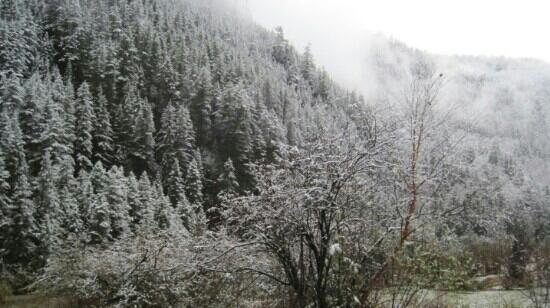 Ganhaizi National Forest Park : 冬日的甘海子国家森林公园,银装素裹
