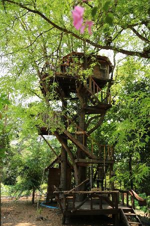 Rabeang Pasak Tree House Resort : a