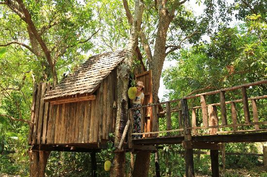 Rabeang Pasak Tree House Resort : b