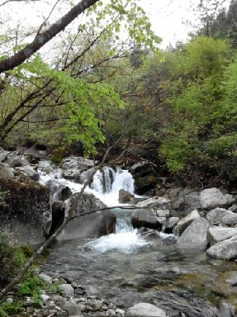 Yangma Canyon Scenic Area: 春天