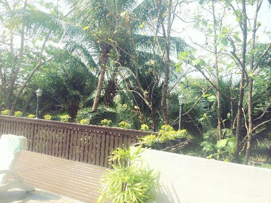 Chiangmai Hill 2000 Hotel: 泳池