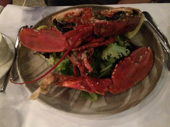 Lofoten Fiskerestaurant : …