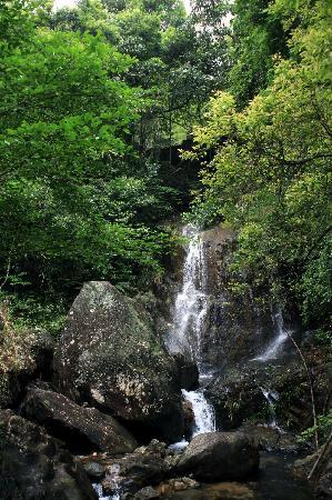 Liuxi River Forest Park: 风景一角