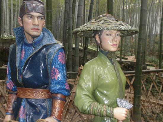 Tea Mountain Bamboo Sea: 重庆永川茶山竹海