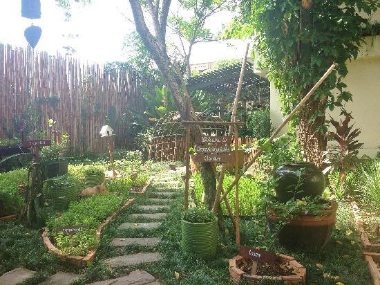 Anantara Bophut Koh Samui Resort : organic garden