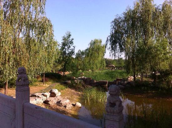 Chaoyang Park : 很大很大的公园