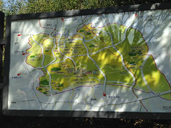 Dafu Mountain Forest Park: 大夫山