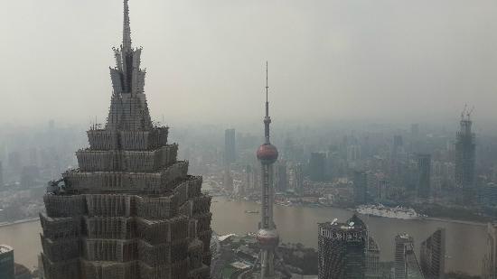 Park Hyatt Shanghai: 比金茂高出不少