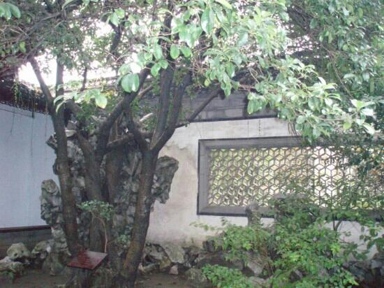 Shen Yuan (Shen Garden): 传统的园林