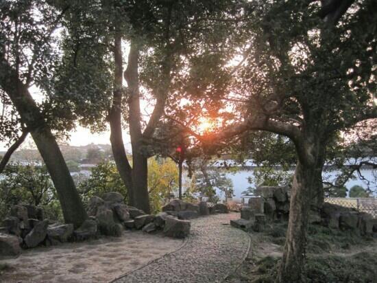 Suzhou Park : 苏州公园里的夕阳景色