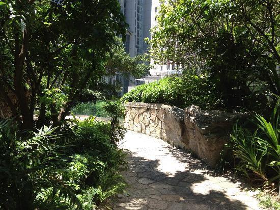 Cheung Kong Park : 公园小径