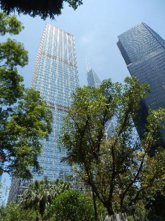 Bank of China Tower : 摩天之高