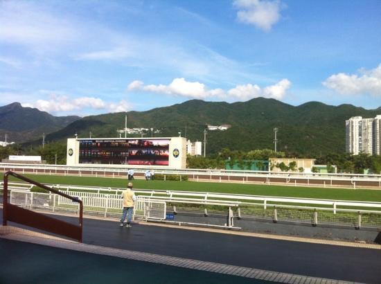 Sha Tin Racecourse : 马场