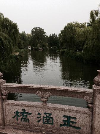 Daming Lake: 大明湖公园一角
