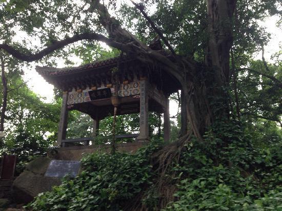 Yushan Mountain: 于山