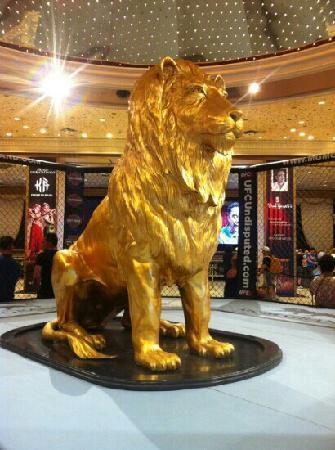 MGM Grand Hotel and Casino: m