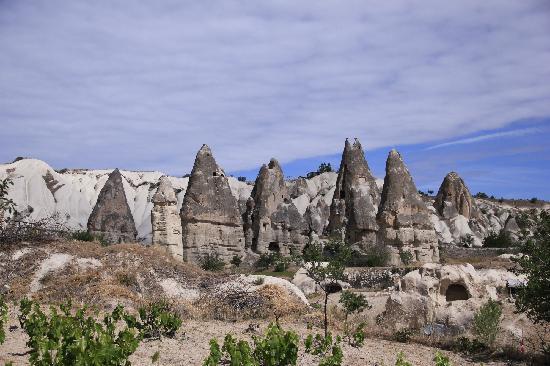 Vineyard Cave Hotel : 露台的景色