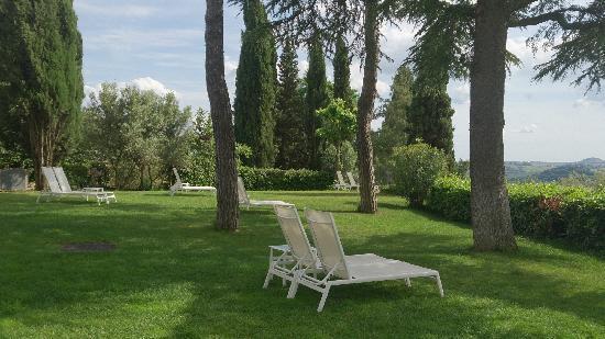 Villa I Barronci : 花园
