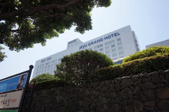 Maison Glad Jeju: 济州岛格兰德酒店
