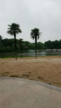 Tinglin Park: 。