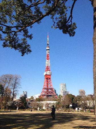 Tokyo Tower : 塔影