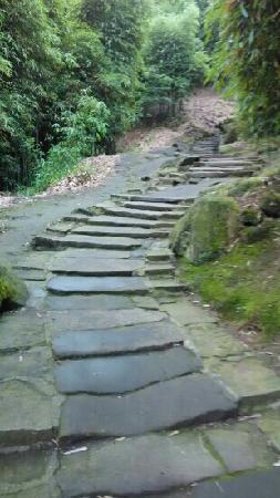 Jinyun Mountain Natural Reserve: 登山路