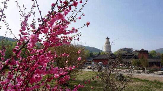 Tayuan Temple: 白塔