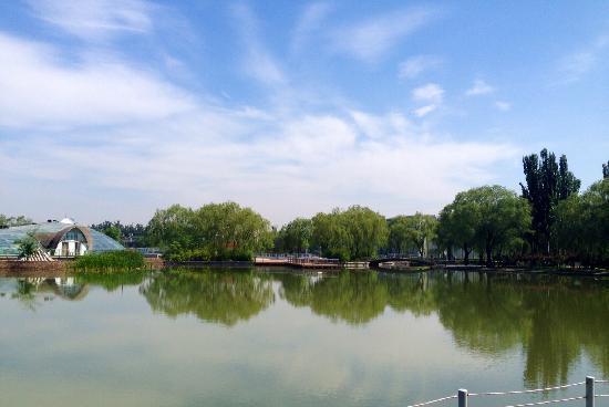 Haidian Park: 水非常绿