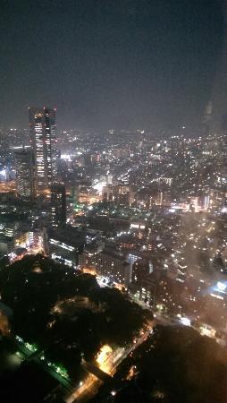 Tokyo Metropolitan Government Buildings: 东京都厅夜景