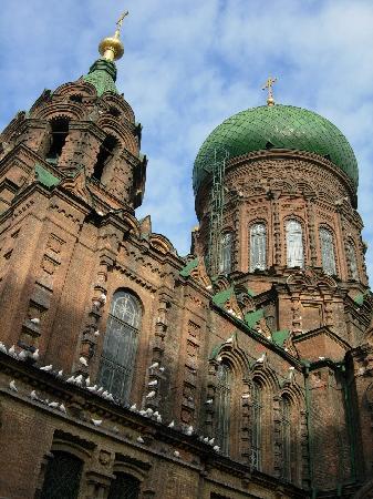 Saint Sophia Cathedral : 俄罗斯风格的圣索菲亚大教堂