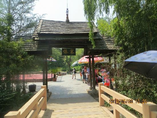Qingyunshan Amusement park: 孔雀