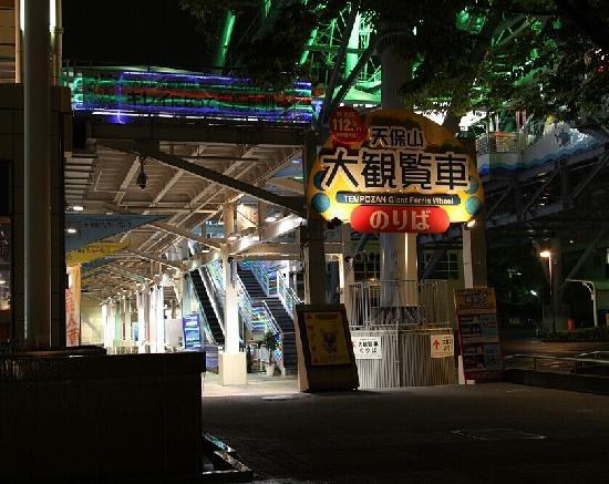 Tempozan Ferris Wheel: 夜景