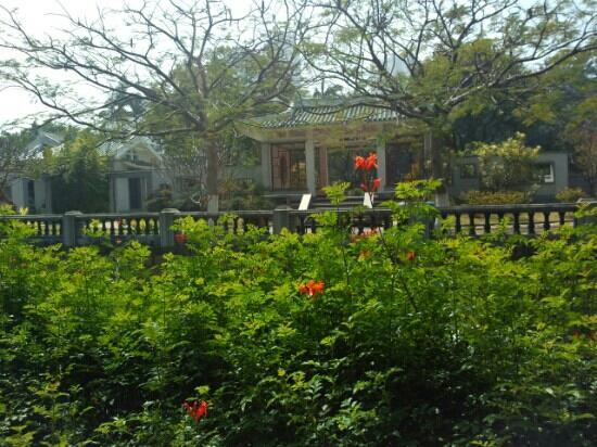Overseas Chinese Subtropical Plant Introduction Garden: 好地方