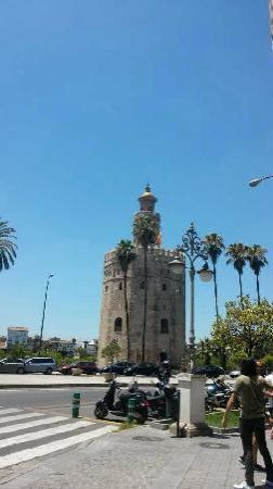 Torre del Oro: 漂亮