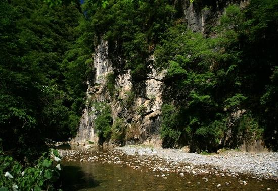 Xiaolong Mountain National Nature Reserve: 0