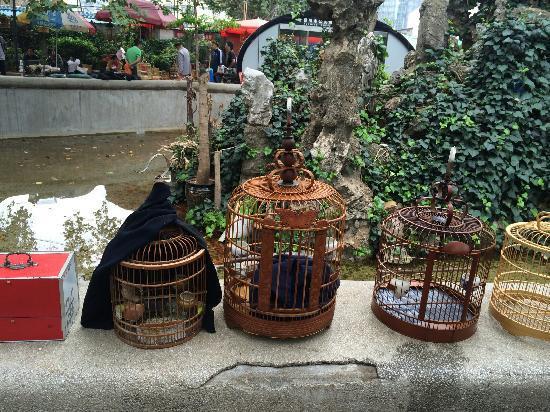 Flowers and Birds Market of Kunming: 鸟语花香的市场