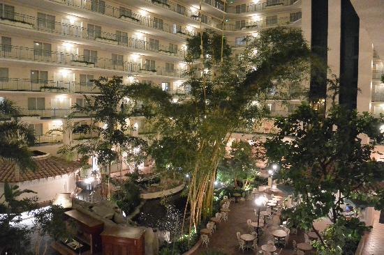 The Embassy Hotel: 天井中的花园