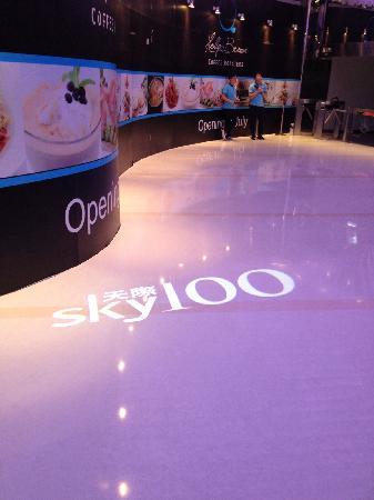 Sky100 Hong Kong Observation Deck: 检票口