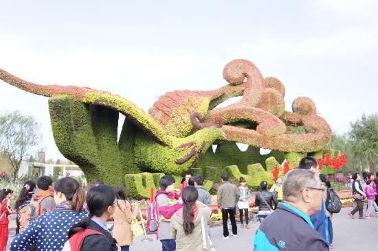 BeiJing YuanBoYuan GuoJi ZhanYuan: 园博园花卉组成的凤凰