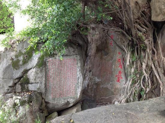Qinyuan Mountain: 山景
