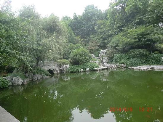 Presidential palace of Nanjing: 总统府的花园