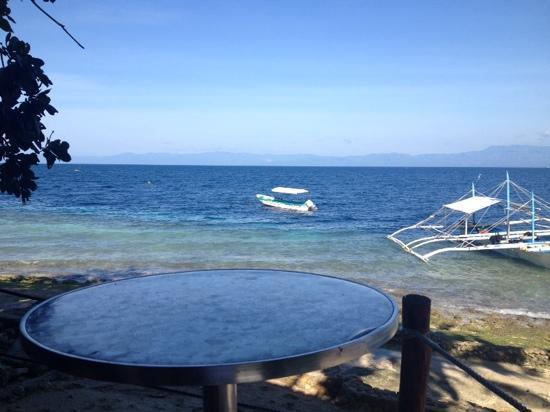 Cebu Dive Centre: 放眼望去