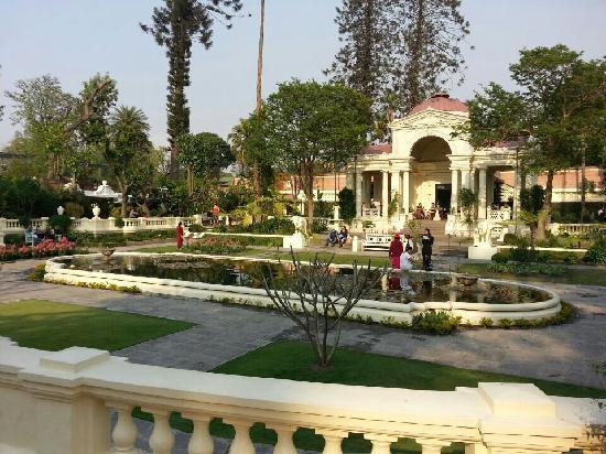Garden of Dreams : 梦想花园