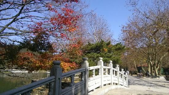 Lushan Scenic Resort: 好美的桥