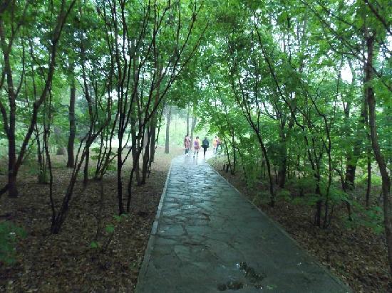 Benxi Water Cave: 沿着小路