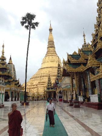 Pagode Shwedagon : 大金塔