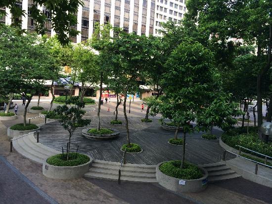 Regal Kowloon Hotel: 酒店门前的花园