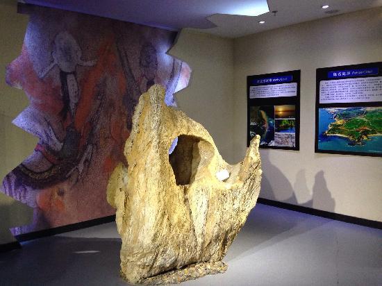 Jinshitan Geological Museum : 展馆