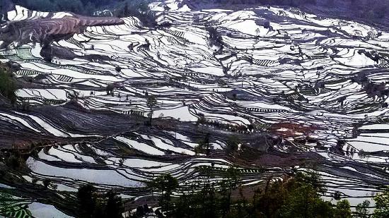 Yuanyang County, Cina: 元阳