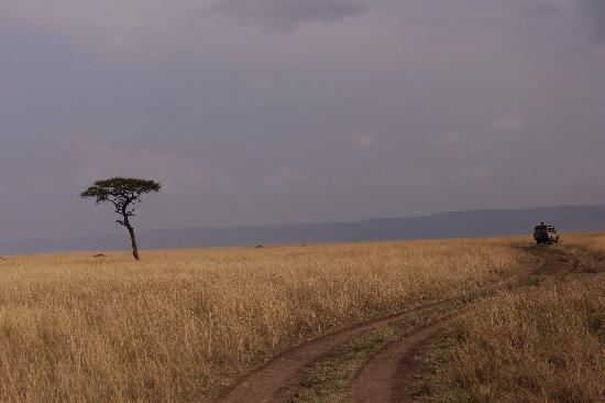 Olare Mara Kempinski Masai Mara: Masai Mara